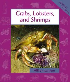 Crabs, lobsters, and shrimps cover image