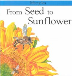 From seed to sunflower cover image