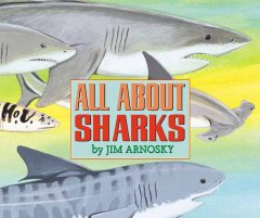 All about sharks cover image