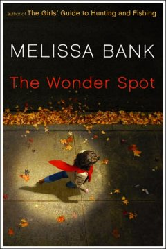 The wonder spot cover image