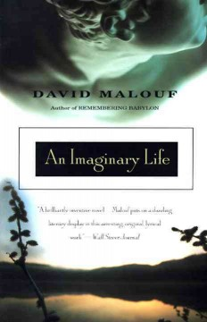 An imaginary life cover image
