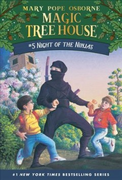 Night of the Ninjas cover image