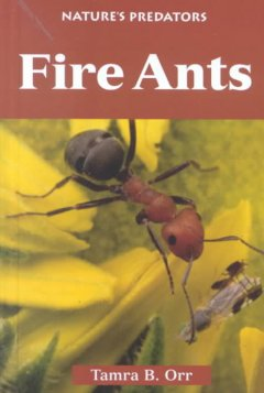 Fire ants cover image