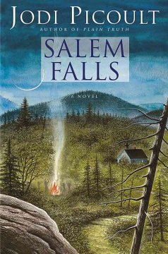 Salem Falls cover image