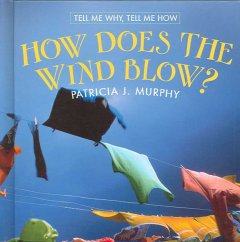 How does the wind blow? cover image