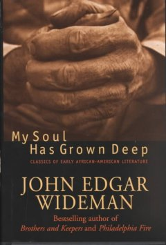 My soul has grown deep : classics of early African-American literature cover image