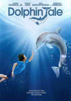 Dolphin tale cover image