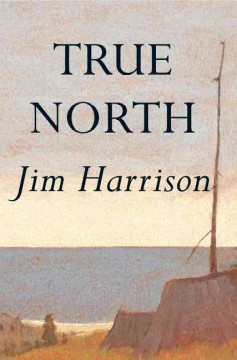 True north cover image