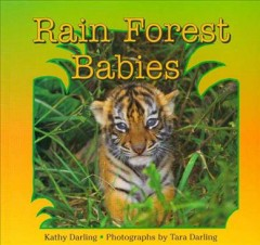 Rain forest babies cover image