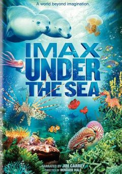 Under the sea cover image