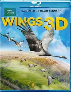 Wings 3D [3D Blu-ray + Blu-ray combo] cover image