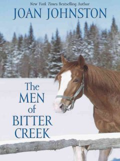 The men of Bitter Creek cover image