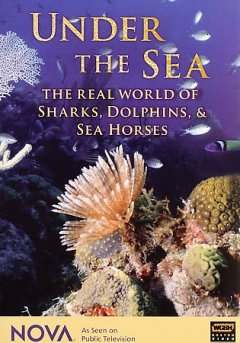 Under the sea the real world of sharks, dolphins and seahorses cover image
