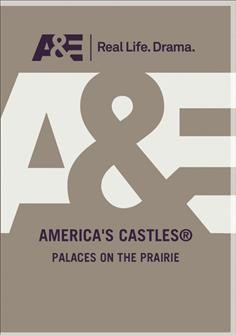 America's castles. Palaces on the prairie cover image