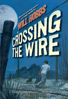 Crossing the wire cover image