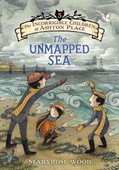 The unmapped sea cover image