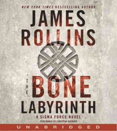 The bone labyrinth cover image