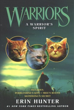 A warrior's spirit cover image