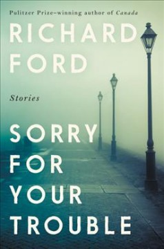 Sorry for your trouble : stories cover image