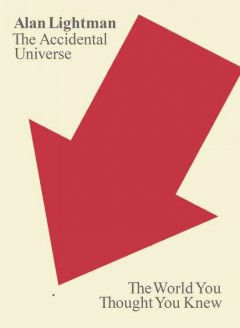 The accidental universe : the world you thought you knew cover image