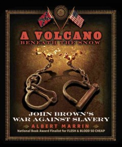 A volcano beneath the snow : John Brown's war against slavery cover image