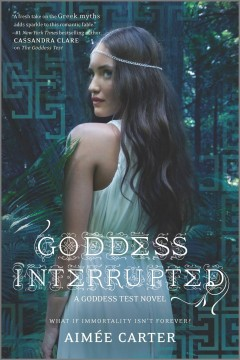 Goddess interrupted cover image