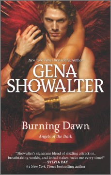 Burning dawn cover image