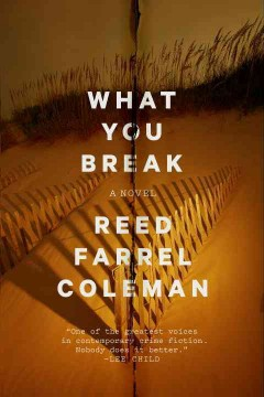 What you break cover image