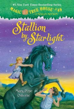 Stallion by starlight cover image