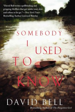 Somebody I used to know cover image