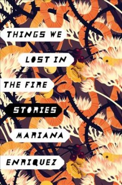 Things we lost in the fire : stories cover image