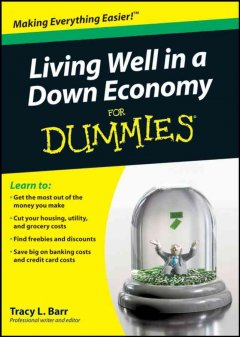 Living well in a down economy for dummies cover image