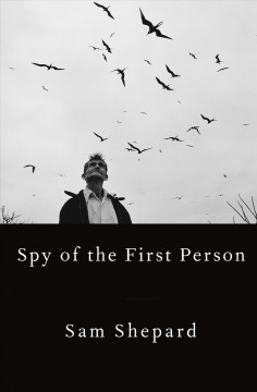 Spy of the first person cover image