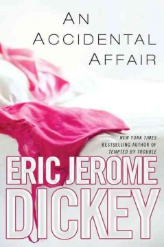 An accidental affair cover image