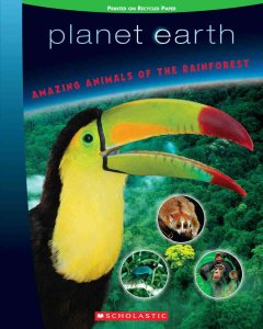 Amazing animals of the rainforest cover image