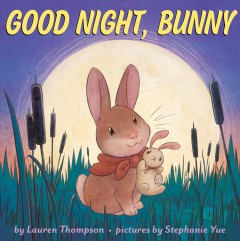Good night, Bunny cover image