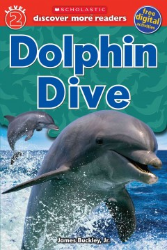 Dolphin dive cover image