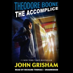 Theodore Boone the accomplice cover image