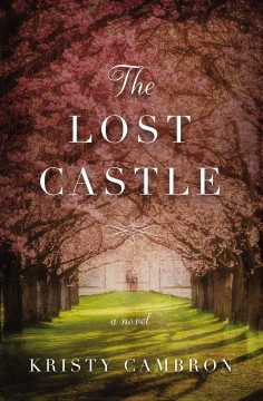 The lost castle cover image