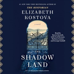 The shadow land cover image