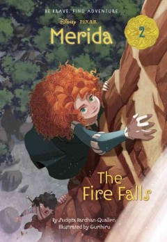 The Fire Falls cover image