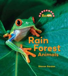 Rain forest animals cover image
