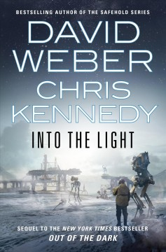 Into the light cover image