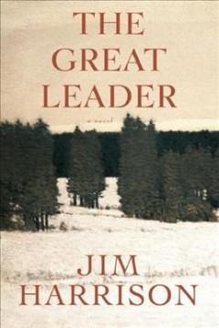 The great leader : a faux mystery cover image