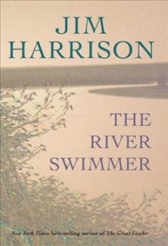 The river swimmer cover image