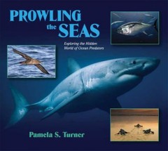 Prowling the seas : exploring the hidden world of ocean predators cover image
