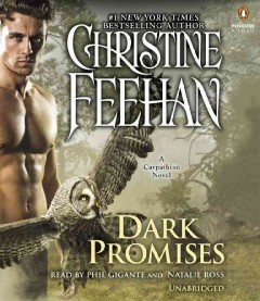Dark promises cover image