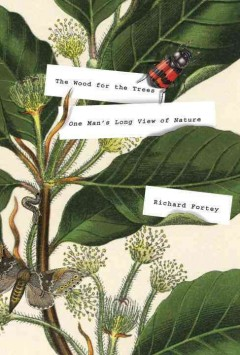 The wood for the trees : one man's long view of nature cover image