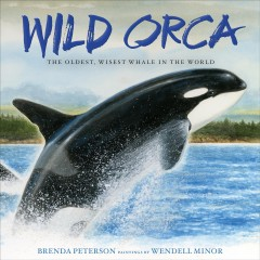 Wild orca : the oldest, wisest whale in the world cover image