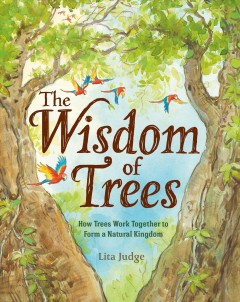 The wisdom of trees : how trees work together to form a natural kingdom cover image